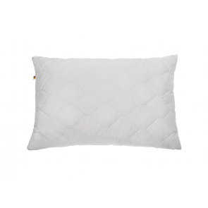 Šilkinė pagalvė