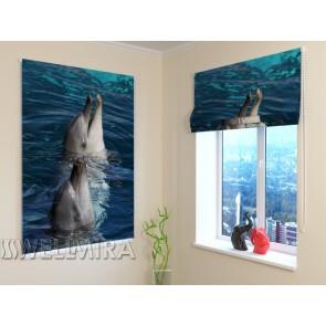 Langų uždengimas: Delfinai
